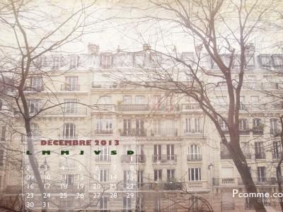 Paris, photographe, professionnel, calendrier, hiver, neige,