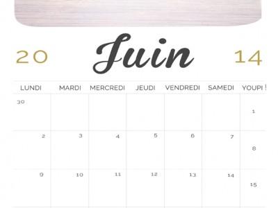 calendrier, juin 2014, photographe, freebies, gratuit, fond d'ecran, cadeau, Paris, création, professionnel