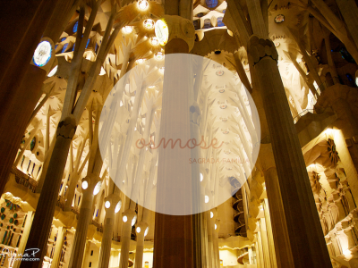 Expérience personnelle - Beloved moments - Sagrada Familia